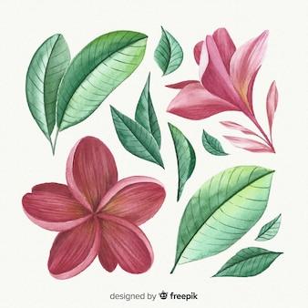 Красивые акварельные цветы и листья