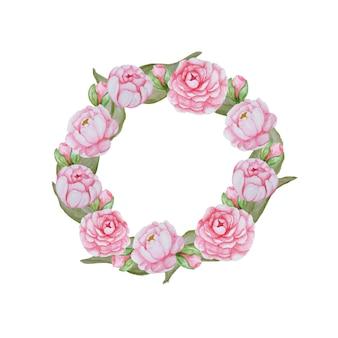 美しい水彩画の花のフレーム。白地にピンクの花の組成