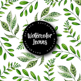 Beautiful watercolor leaves pattern background