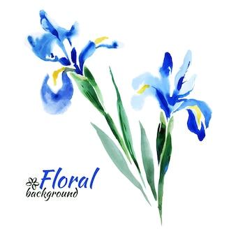 아름 다운 수채화 물감 파란색 창포입니다. 벡터 일러스트 레이 션. 해피 어머니의 날 카드입니다. 해피 발렌타인 데이 카드