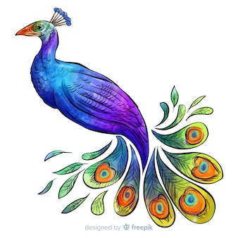Beautiful watercolor peacock