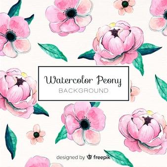 Beautiful watercolor peony flowers background