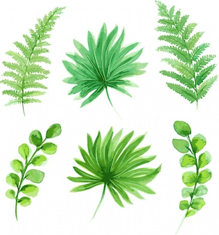 Leaves Leaf Free Download Clip Art On Clipart Library - Leaf Clipart - Free  Transparent PNG Clipart Images Download