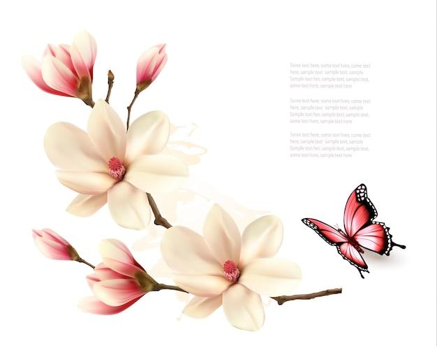 蝶と美しい白いマグノリアブランチ。ベクター。