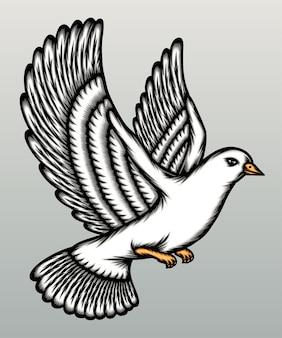 회색에 고립 된 아름 다운 흰색 비둘기