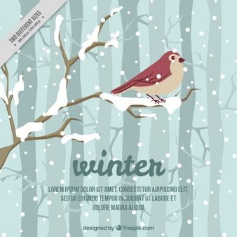 Beautiful winter background with bird and snow