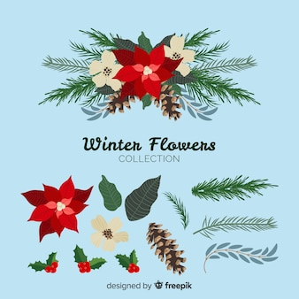 Beautiful winter flowers collection