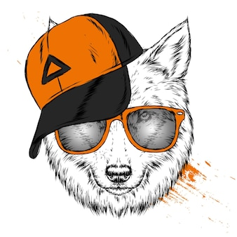 Beautiful wolf in a cap and glasses