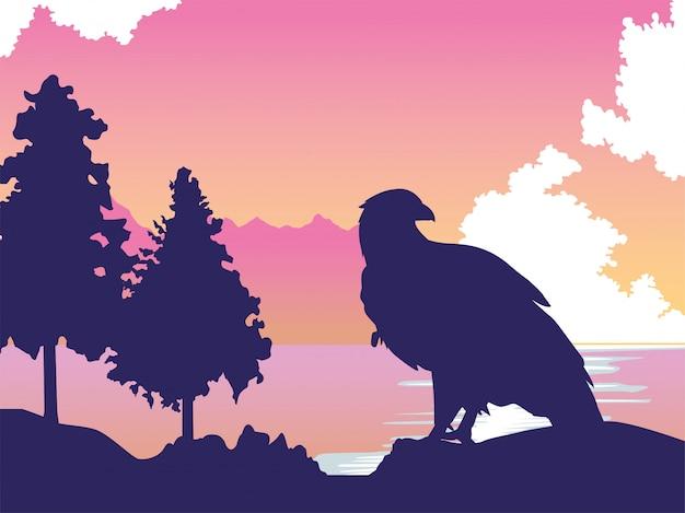 Красивый дикий орел в пейзажной сцене