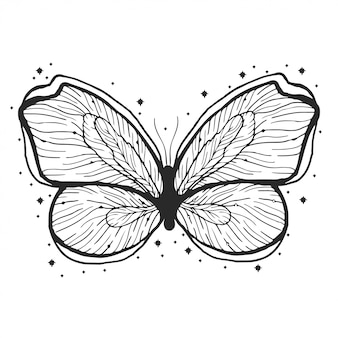 Beauty butterfly hand drawn illustration.