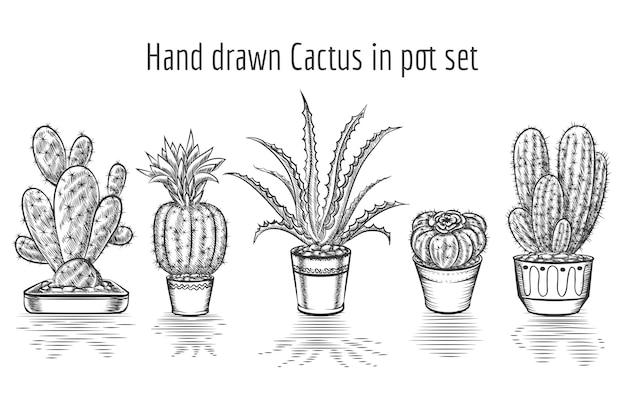 Кактусы красоты. набор рисованной кактус в горшке. растительное искусство, элемент цветочного комнатного растения.