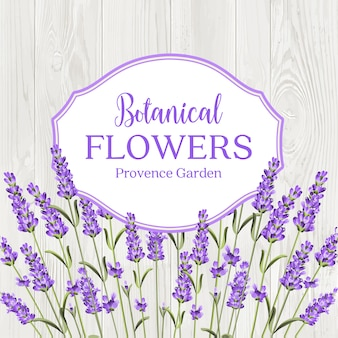 Beauty lavander label design.
