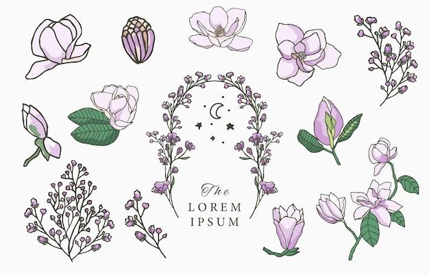 Лаванда красоты, иллюстрация дизайна коллекции магнолии