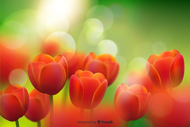 Beauty realistic tulips background