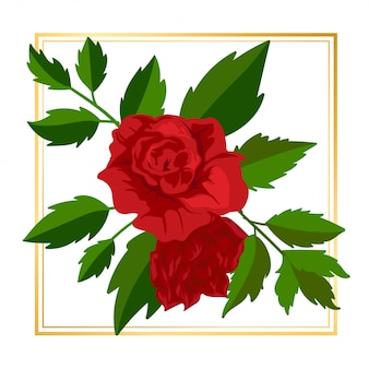 Beauty red rose floral flower vintage leaf nature