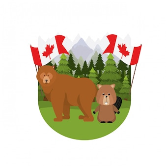 Beaver and bear animal of canada