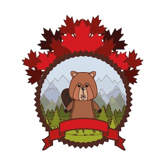 Beaver forest animal of canada