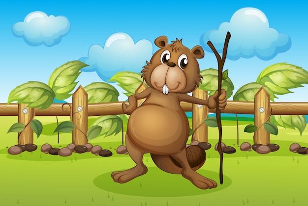 A beaver holding a stick