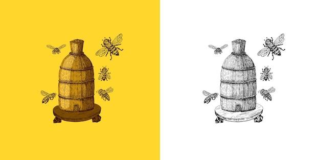꿀벌과 꿀 미드와 곤충과 꽃과 양봉 벌집과 벌집 벡터 새겨진 손