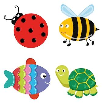Bee ladybug turtle fish