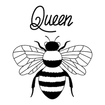 Bee queen outline drawing line vector illustration isolated on white background
