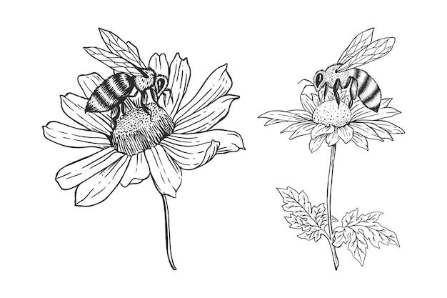 꽃 손으로 그린 그림 템플릿 세트와 꿀벌
