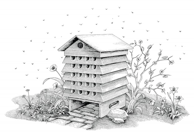 蜂の巣手描きビンテージスタイルの白い背景の分離