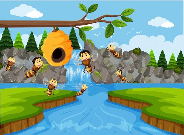 Beehive in waterfall scene