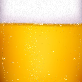 Beer back