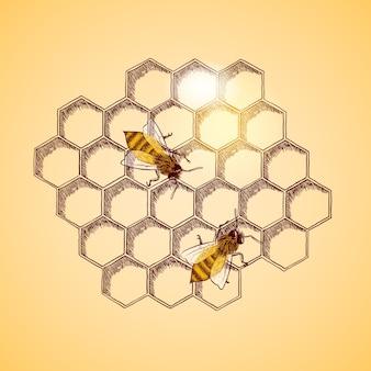 Disegno api sfondo