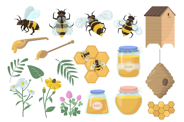 Bees and honey set. flowers, beehive and honeycombs, jar, pot and dipper isolated on white background.