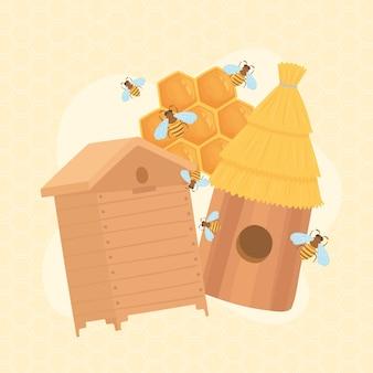 Bees honeycombs honey