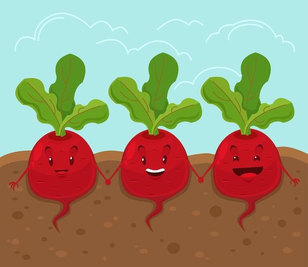 Beet grow underground. cartoon flat illustration