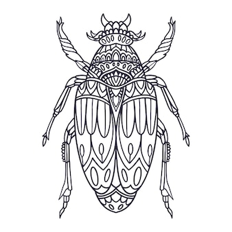 Beetle hand drawn illustration with doodle style
