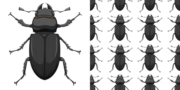 Insetto dello scarabeo e priorità bassa senza giunte