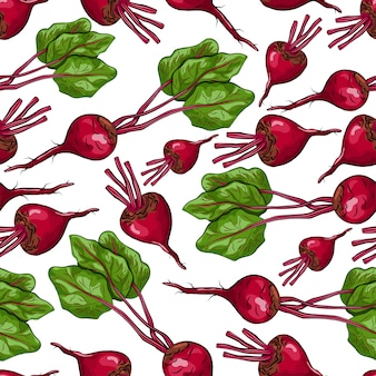 Beetroot seamless pattern on a white background for packing, wrapping, labels and backdrop. vegetables texture.