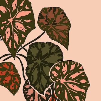Листья бегонии bowerae выдержаны в модном минималистском стиле. силуэт растения в современном абстрактном стиле. векторная иллюстрация коллаж. для печати на футболках, открыток, плакатов, сообщений в социальных сетях