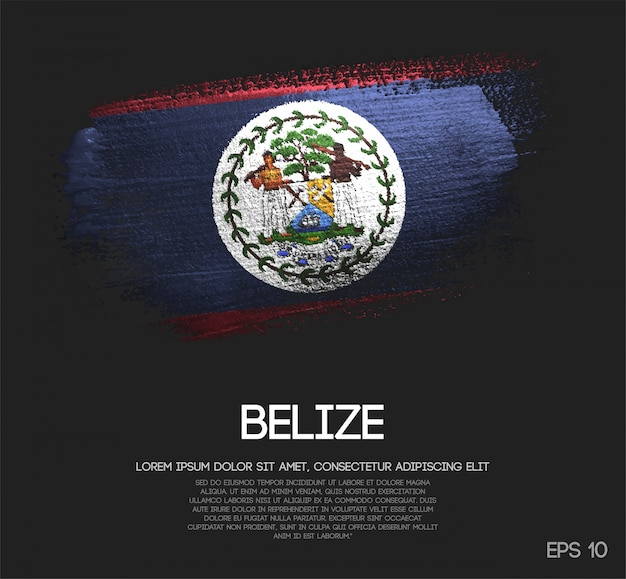Belize flag made of glitter sparkle brush paint vector