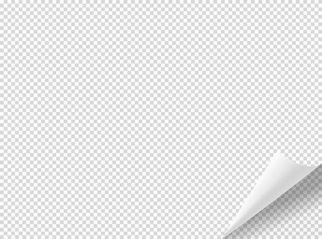 Bending paper vector