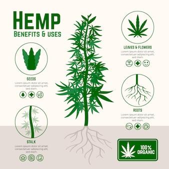Benefits of cannabis hemp infographic
