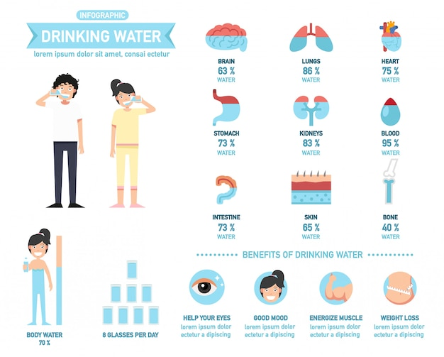 Benefits of drinking water infographics for body water, vector