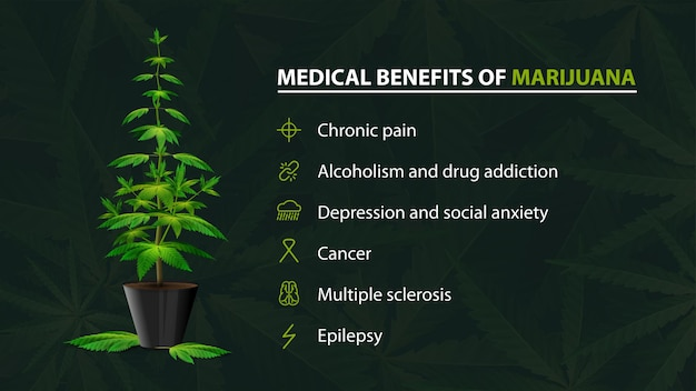 Benefits uses of medical marijuana, green poster for website with bush of cannabis in a pot and infographic of benefits