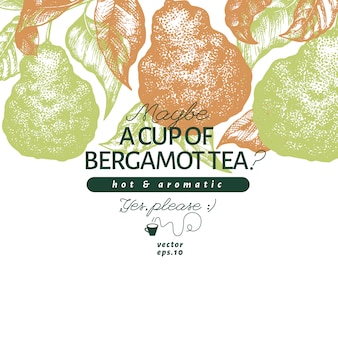 Bergamot branch design template