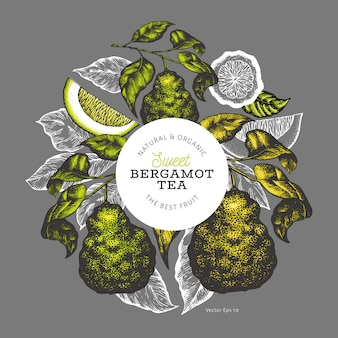 Bergamot branch design template.