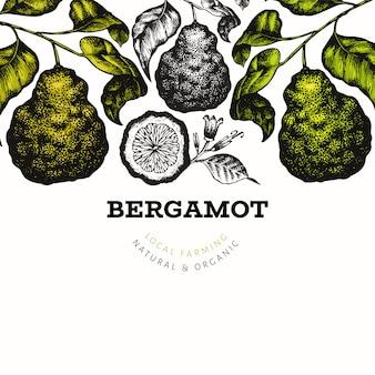 Bergamotブランチデザインテンプレート。カフィアライムフレーム。手描きベクトルフルーツイラスト