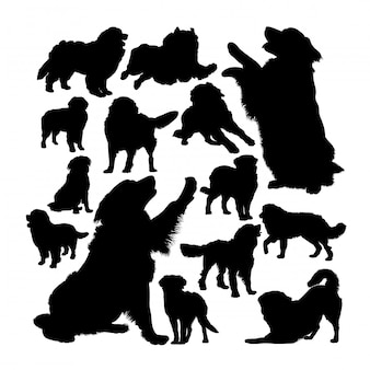 Bernese mountain dog silhouettes