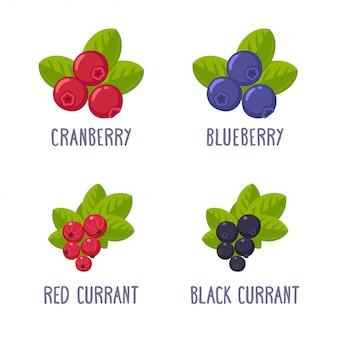 Berries fruits set