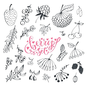 Berries hand drawn doodle set. vector isolated berry set on white background