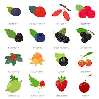 Набор иконок ягоды. мультфильм иллюстрация 16 ягод векторных иконок для веб