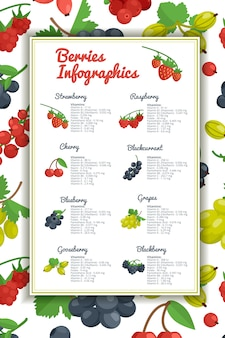 Berries infographic set